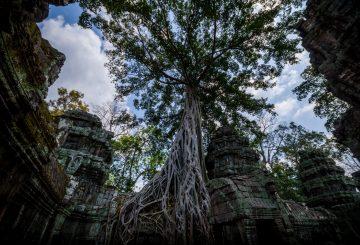 Angkor Wat – Geschichte erleben!
